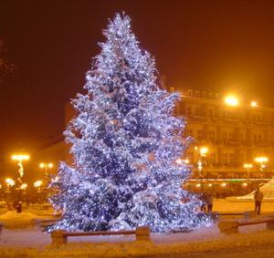 Christmas tree-Kossuth ter
