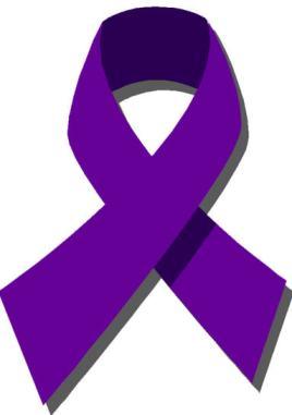 domestic violence2