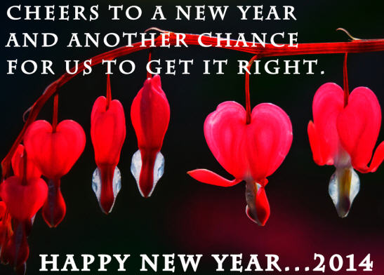 New Year 2014-2
